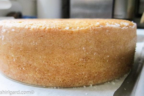 Baked Shortcake Ready for Splitting & Filling
