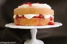 Creamy White Strawberry Shortcake