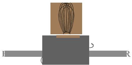 ShirlGard Logo