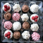 Devil's Food Chocolate Cupcake Tray