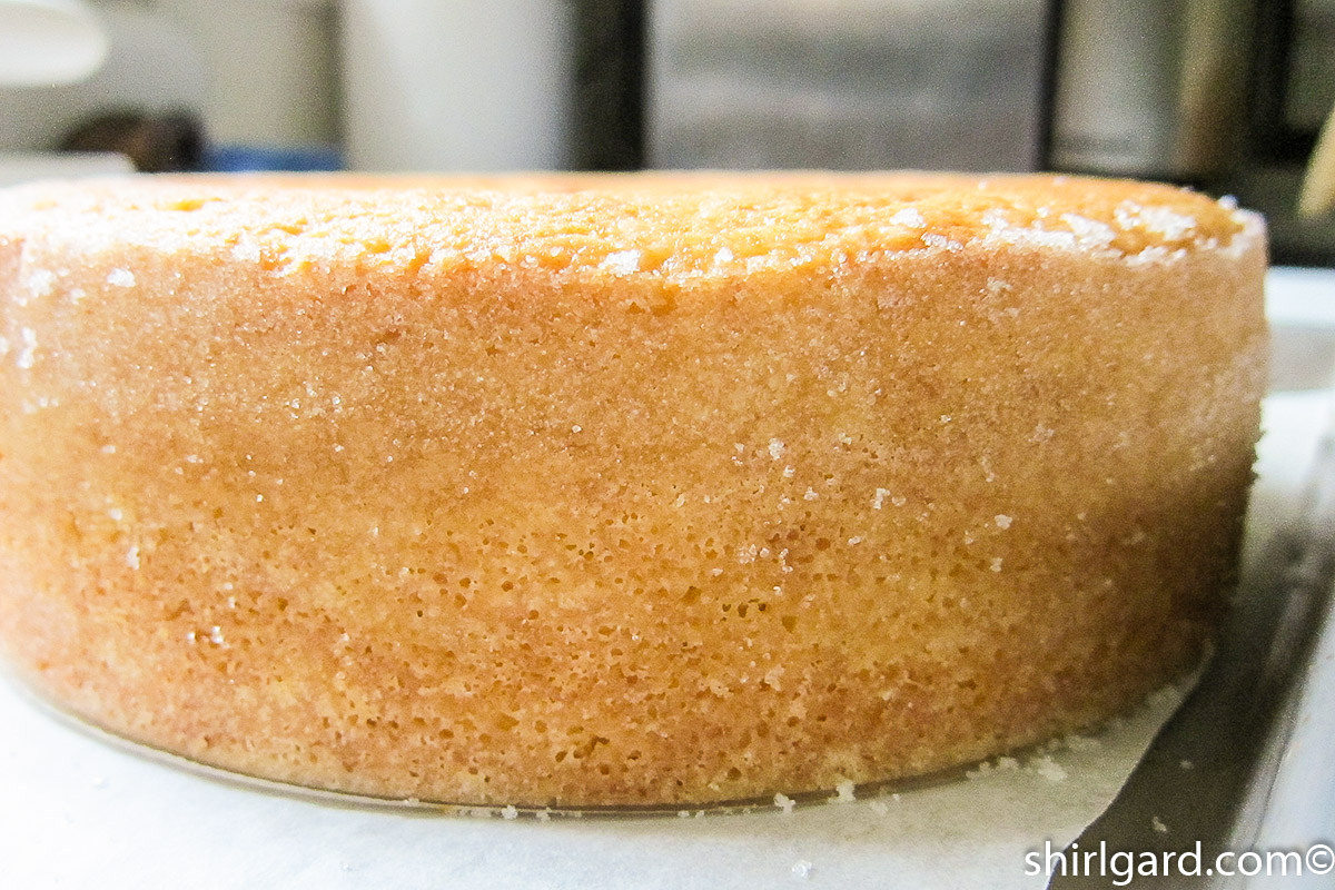 Baked shortcake ready for splitting & filling.