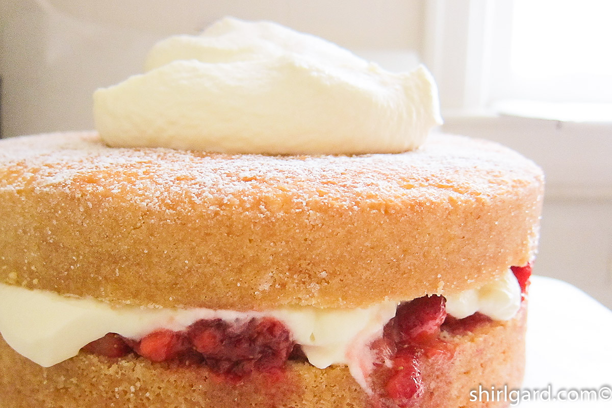 Top layer of cake & more whipped cream