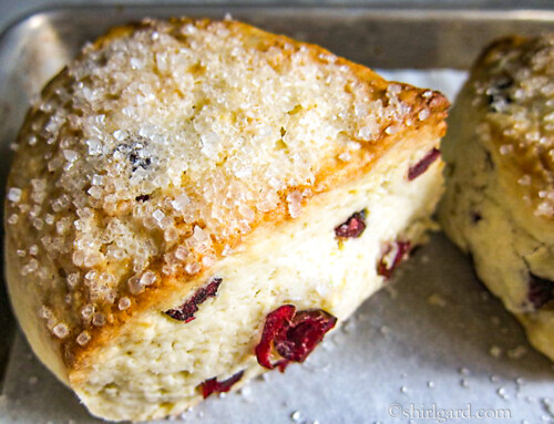 Cranberry Cream Cheese Scones
